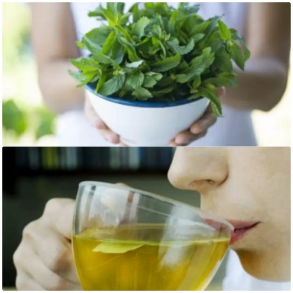 Remedio casero estrella para aliviar el dolor de estómago