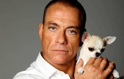 Jean-Claude Van Damme salvó la vida Raya, la chihuahua sin papeles