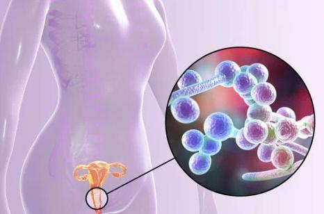 Alimentos para ayudarte a tener una vagina saludable